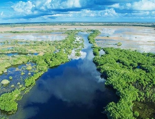 Volvo CE helps restore Florida's Everglades to former glory